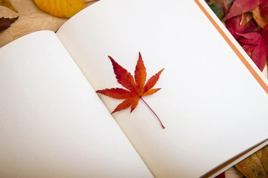 Your Guide to Canadian Literary Submissions