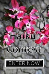 Haiku Contest