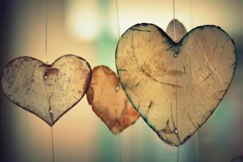 wooden hearts in the sun
