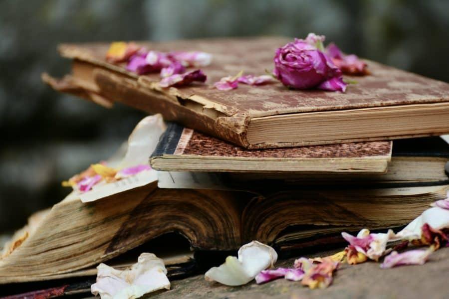 Writing Dreams, Rewriting Life
