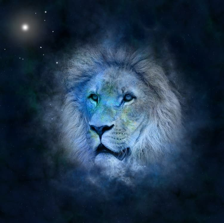 Lion and star